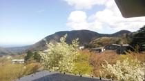 4Fからの風景(春)