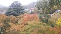 大浴場からの景色(秋・11月)