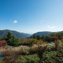 *早雲山駅/強羅の町並や箱根外輪山を一望できます!