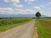 丘の景色1