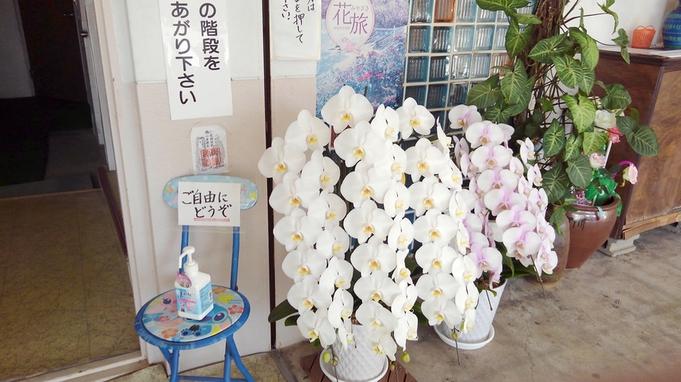【二食付き】女将手作り♪新鮮な食材を使った宮崎の家庭料理を召し上がれ