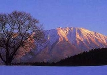 夕日に映える小岩井一本桜と岩手山