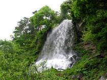 乙女滝(新緑)
