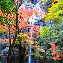 紅葉の六十尋滝