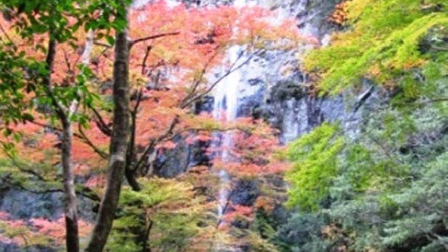 *紅葉の六十尋滝