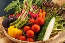 食材イメージ(野菜)