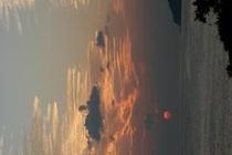 千尋と夕日