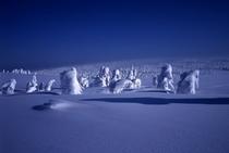 日本三大樹氷 八幡平