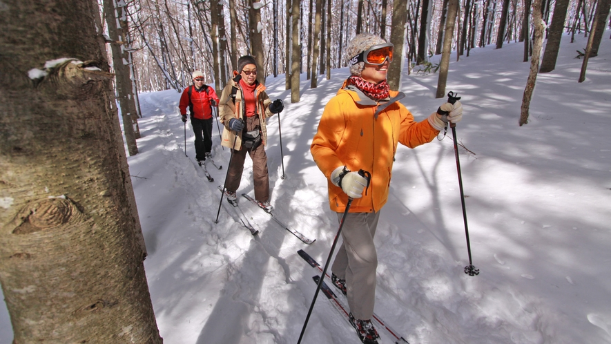 ◆神秘の森をクロスカントリーでゆく 1月~3月