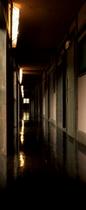 1階 客室前の廊下