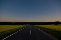 秋の空と路