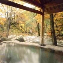混浴露天風呂「せせらぎの湯」(秋の景観)※女性専用時間あり