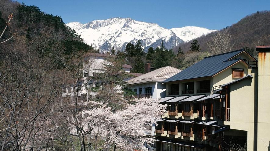 【外観・春】雪山を望む