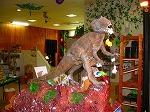 【3D宇宙恐竜館】