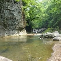 鹿又川 上流1