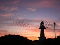 朝焼けの積丹岬灯台
