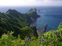 神威岬・全景