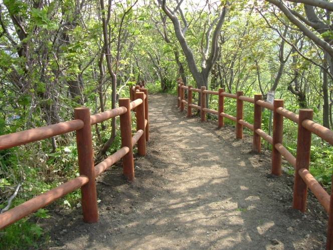 黄金岬・遊歩道