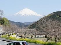 富士山(01)