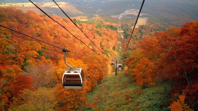 【チケット付】秋は紅葉♪マウントジーンズ那須ゴンドラに乗って空中散歩☆