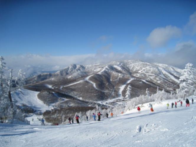 志賀高原(車90分)冬はスキーパラダイス。グリーン期は絶景のドライブルート