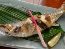 15. 海から揚がったはかりの新鮮な魚は、焼き魚も立派なごちそう