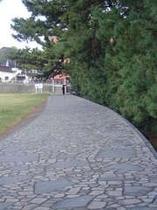 6. 海岸沿いの散歩道