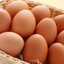 高級レストランでも使用している卵は地元の「太陽卵」を使用