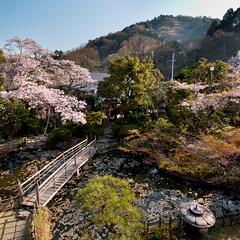 【小旅行気分でゆったり温泉日帰りプラン】 花コース