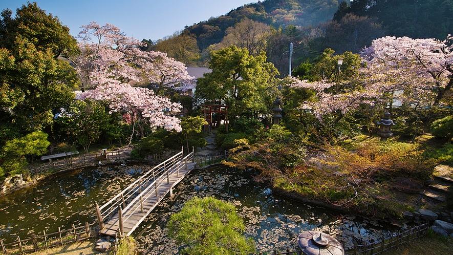 """【日本庭園】季節ごとに表情を変える""""三千坪""""の日本庭園は、いつ見ても目新しいもの"""
