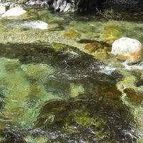 ココロ癒される 澄んだ川!エメラルドグリーン