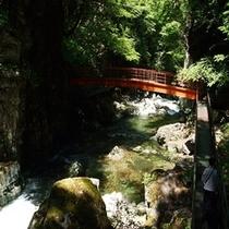 【岐阜の宝物第一号】三つ滝に続く赤い橋