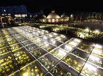 ラグーナ蒲郡に2016年3月19日に新エリア「フラワーラグーン」がオープン!写真は夜のフラワースカイ