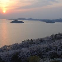 桜の時期のスカイラウンジからの眺め