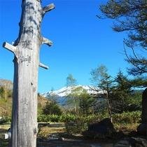 野麦峠から望む乗鞍岳