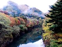 紅葉の中で七峰館を望む