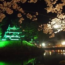 日本三大夜桜 高田公園