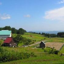 【観光】夏の松之山でキャンプ体験ができる大郷寺高原。キャンプを楽しんだ翌日に当館で温泉を楽しむ方も。
