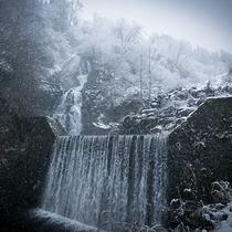 【撮影スポット】宿から歩いていける距離にある不動滝。季節ごとに違った表情を見せてくれます。