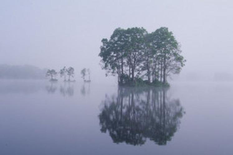 朝霧の曽原湖