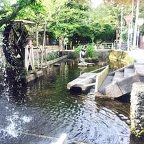 *【蓮沼川(宮さんの川)】<当館より徒歩1分>噴水、水車、鯉や四季の花が散策する人々を楽しませます。