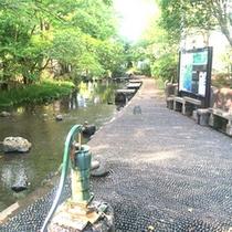 *【源兵衛川(源平川)】<当館より徒歩1分>広瀬橋近くには昔懐かしい手扱ぎポンプも設置されています。