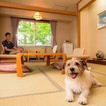 大江本家ではワンちゃんと一緒に泊まれるお部屋をご用意しております