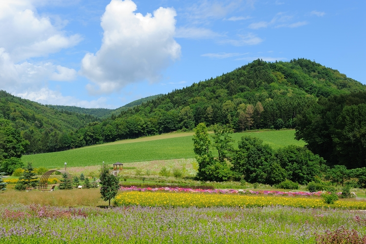 山々に囲まれた自然豊かな環境にございます