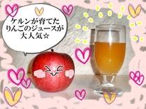大人気!りんご100%ジュース ケルンの畑で採れたりんごをギュッと搾っただけ!