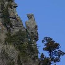 *自然が作り出した芸術…トカゲ岩