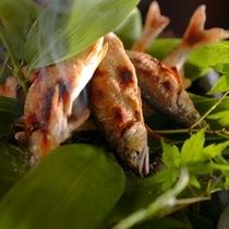 信州の清らかな水で育った川魚