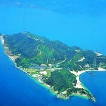 空から見た大久野島