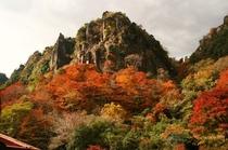 耶馬溪一目八景の紅葉