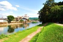 亀山公園 緑